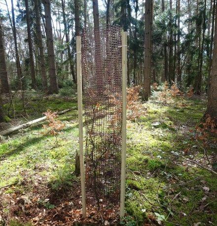 PlantaGard Baumschutz-Gitterhülle Freiwuchs-Bio-Light 120_2